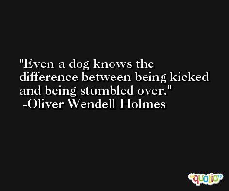 Even a dog knows the difference between being kicked and being stumbled over. -Oliver Wendell Holmes