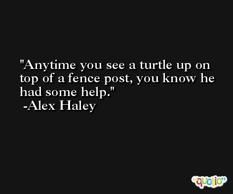 Anytime you see a turtle up on top of a fence post, you know he had some help. -Alex Haley