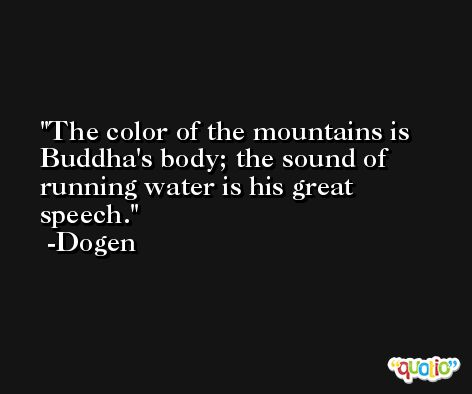 The color of the mountains is Buddha's body; the sound of running water is his great speech. -Dogen