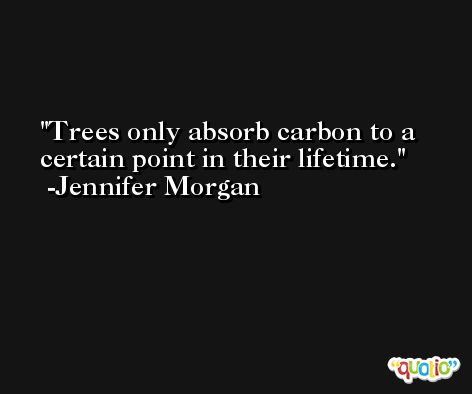 Trees only absorb carbon to a certain point in their lifetime. -Jennifer Morgan