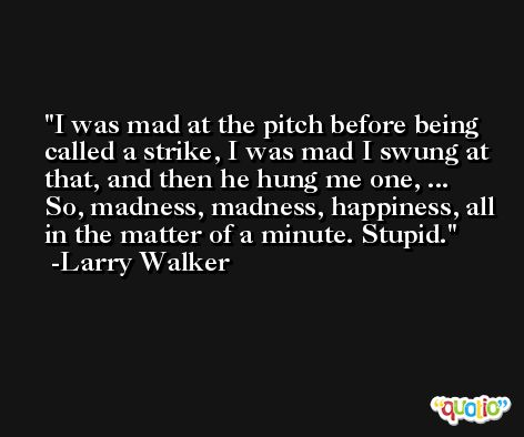 I was mad at the pitch before being called a strike, I was mad I swung at that, and then he hung me one, ... So, madness, madness, happiness, all in the matter of a minute. Stupid. -Larry Walker