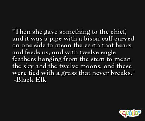 Then she gave something to the chief, and it was a pipe with a bison calf carved on one side to mean the earth that bears and feeds us, and with twelve eagle feathers hanging from the stem to mean the sky and the twelve moons, and these were tied with a grass that never breaks. -Black Elk