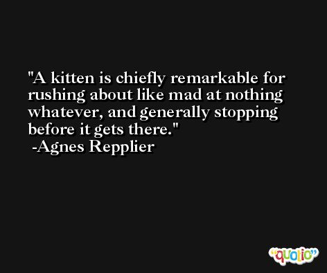 A kitten is chiefly remarkable for rushing about like mad at nothing whatever, and generally stopping before it gets there. -Agnes Repplier